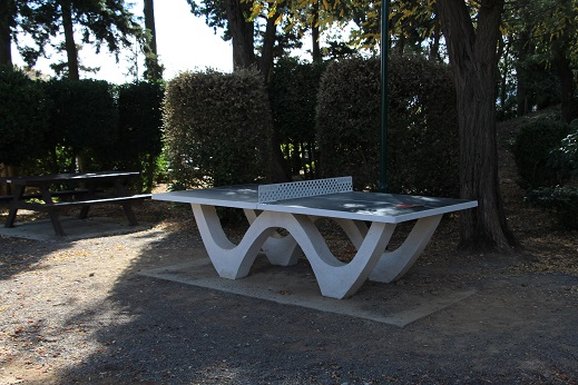 table de ping pong-light